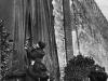 37. В.И.Ленин разрезает ленту, открывая мемориальную доску на стене Кремля в память павших за мир и братство народов. Москва, 7 ноября 1918 года